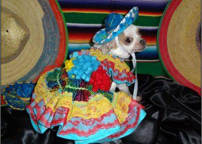 Miss Sparkles, Mexican Senorita