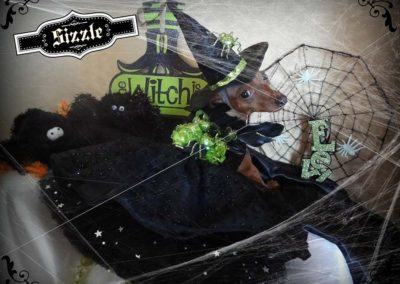 Sizzle, Wicked Witch