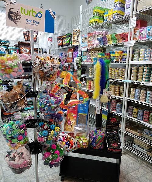 Cat-Products at CatsnDogs Pet Supplies store