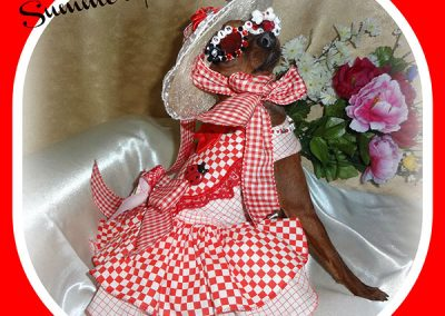 Gin the in a red and white checkered picnic dress with hat and sunglasses
