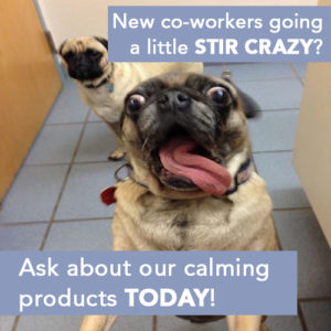 Working at home causing your co-workers to go a little Stir Crazy?