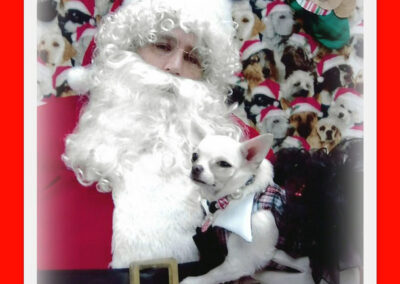 White dog gets his picture taken with Santa