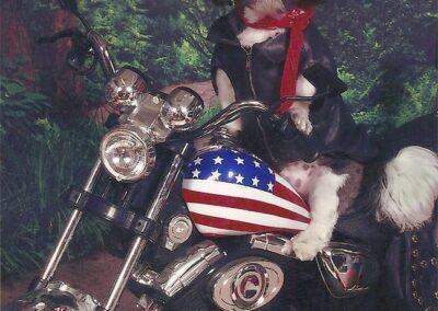 Bull Dog sits on a motorcylce