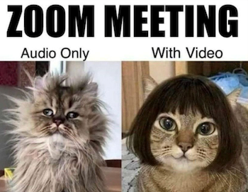 Are you tired of Zoom Meetings funny image